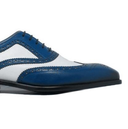 Men Blue And White Shoes
